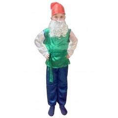 Карнавальный костюм Гнома в зеленом, MK11057
